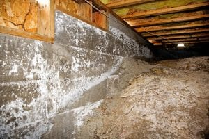 Crawlspace Mold: Where it Comes from, Why it's a Problem, and How to Solve It